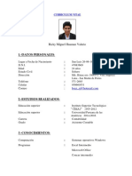 CV. Miguel Huaman.docx
