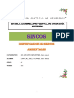 Distrito de Sincos Monografia Mery Final