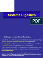 sist._digestivo.veterinaria_ii.ppt