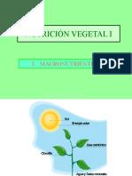 Nutricion Vegetal I, II, III, IV, y otros_1.ppt