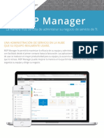 MSPManager Brochure LAS