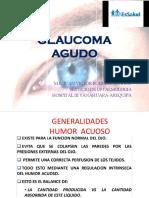 Glaucoma Agudo Jvrb