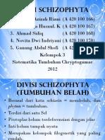 divisi-schizophyta