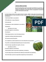 La Agricultura en El Peru Actual