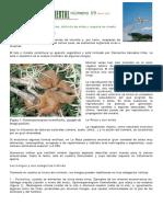 las_setas_en_la_rioja._autor_agustin_caballero_moreno (1).pdf