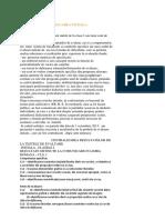 Model ev initiala Raport.docx