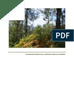 Valoracion Economica Cluster Da Madeira Da Superficie Forestal de Ourense