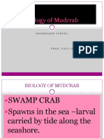 Biology of Mudcrab