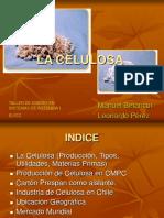 Manuel_Betancur_-_Leonardo_Perez_-_Celulosa_-_2006-05-09.ppt