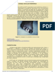 Doença Vascular Periférica