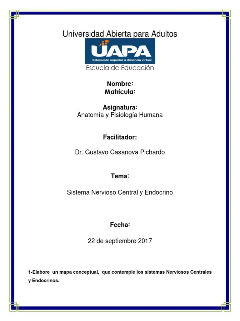 Tarea-III-Anatomia-Humana.docx