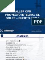 Manual de Ofm(Oil Field Manager)