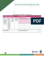 tabla7 plan de trabajo anual SG-SST.pdf