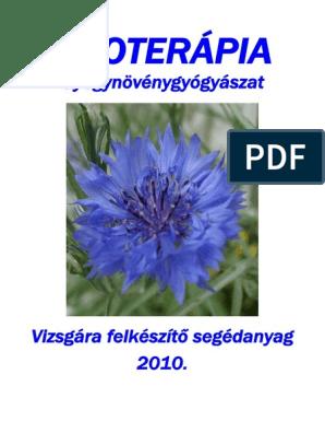 Saponaria Officinalis-orvosi szappanfű – Fitoterápiakalauz