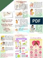 Folleto 10 Claves Lactancia Materna Juliana Torrado