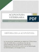 ACUPUNTURA_VETERINARIA.pptx