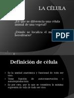 celula (1).ppsx