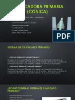 Chancadora Primaria (cónica).pptx