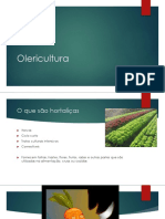 aula7olericultura-150407131356-conversion-gate01.pptx