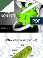 Lect 08 DNA Non Inti
