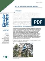 Manual de Coleta de Sementes Florestais