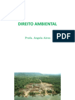 DIREITO AMBIENTALcurso2 (1)