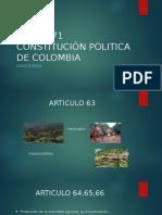 Art 63-71 Constitución Politica de Colombia
