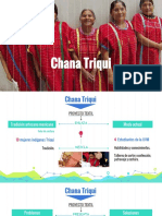 Chana Triqui.pptx