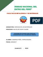 camargo-peña.docx