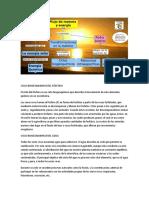 Ciclo Biogeoquimico Del Fósforo
