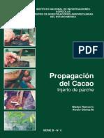 Propagacion Del Cacao_Injerto de Parche