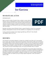 Juan Salvador Gaviota 2