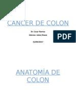 CA Colon
