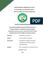 Informe Ppp Encuadernar