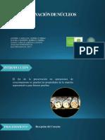 Preservación - copia.pdf