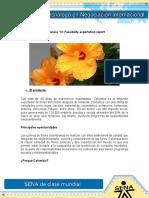 Evidencia 13 Feasibility Exportation Report (1)