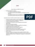 DSMV.pdf