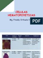 CELULAS HEMATOPOYETICAS.pptx