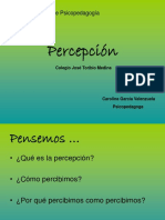 Percepcio Visual