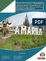 Proyecto de Inversión Pública(PIP) Amarilis-Huánuco