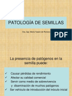Patología de Semillas