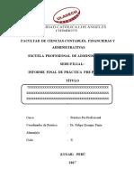 Estructura de Informe de Ppp-2017