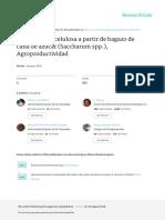 Celulosa_Bagazo de Caña_Agropdroductividad´016