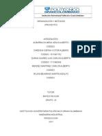 Primera Entrega Organizacion y Metodos