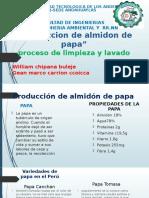 Produccion de Almidon de Papa Gestion Ambiental