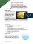 ESTADOS FÍSICOS DE LA MATERIA.docx
