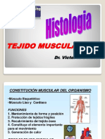 Tejido Muscular Histologico
