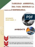 Contabilidad ambiental exposicion