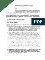 Normas de Auditoría Completo