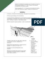 Cortes Geologicos